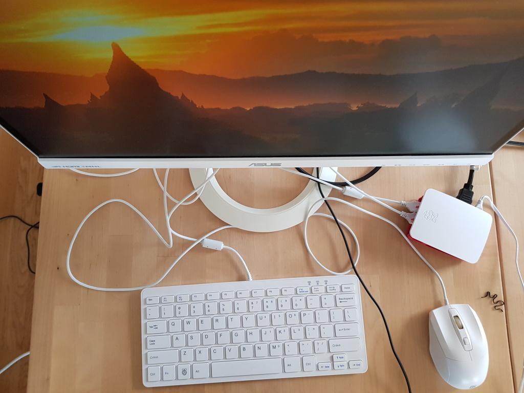 Working Raspberry Pi